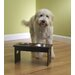 Mahogany Elevated Dog Feeder with Stainless Steel Bowls