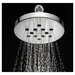 Speakman Rainstream Rain Shower Head