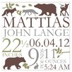 <strong>Alphabet Garden Designs</strong> Forest Critter Birth Announcement Canvas Art