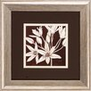 Propac Images Sepia Lily 2 Piece Framed Graphic Art Set