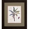 Propac Images Exotic Tree 2 Piece Framed Graphic Art Set