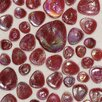 "Daltile Glass Pebbles 10"" x 10"" Decorative Accent in Scarlet Iridescent"