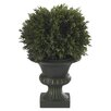 Nearly Natural Cedar Ball Floor Plant in Urn (Set of 3)