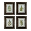 Sterling Industries Fashionable Fern 4 Piece Framed Graphic Art Set