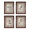 Sterling Industries Imperial Foliage 4 Piece Framed Graphic Art Set