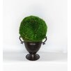 Bougainvillea Metal Trophy Small Vase with Moss Topiary Ball
