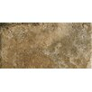 "Marazzi Archaeology 12"" x 24"" ColorBody Porcelain in Chaco Canyon"