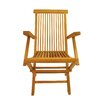 <strong>Anderson Teak</strong> Classic Folding Armchair (Set of 2)