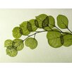 Moe's Home Collection Leaf Painting Print on Canvas in Green