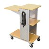<strong>Mobile Presentation Station with Casters and Electric</strong> by Luxor