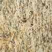 "<strong>Natural Stone 12"" x 12"" Granite Tile in Santa Cecilia</strong> by Emser Tile"