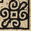 "Emser Tile Natural Stone 4"" x 4"" Honed Marble Fabia Listello Corner"