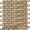 "Emser Tile Natural Stone 1"" x 1"" Travertine Unpolished Mosaic in Mocha"