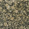"Emser Tile Natural Stone 12"" x 12"" Granite Tile in Baltic Brown"