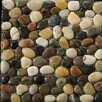 Emser Tile Natural Stone Random Sized Rivera Pebble Mosaic in 4 Color Blend