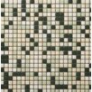 "Emser Tile Image 1/2"" x 1/2"" Glossy Glass Mosaic in Representation"