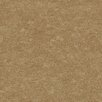 Brewster Home Fashions Artistic Illusion Redding Acanthus Texture Wallpaper