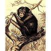 DonnieAnn Company African Adventure Chimpanzee Novelty Rug