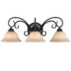 Wildon Home ® Homestead 3 Light Bath Vanity Light