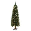 General Foam Plastics 5' Green Alpine Christmas Tree with 105 Clear Lights