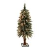 General Foam Plastics 3' Frosted Alpine Christmas Tree with 35 Clear Lights