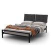 Amisco Delaney Platform Bed