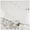 """EliteTile Classique 18"""" x 18"""" Ceramic Floor and Wall Tile in Calacatta"""