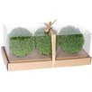 A&B Home Group, Inc Faux Ball Decor II Round Topiary (Set of 2)
