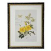 Winward Designs Botanic Framed Graphic Art