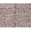 Solistone Standing Pebbles Random Sized Interlocking Mesh Tile in Grotto