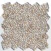 Solistone Decorative Random Sized Pebble Unpolished Mosaic in Playa Beige