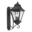 <strong>Elk Lighting</strong> East Bay Street 3 Light Outdoor Wall Lantern