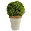 Picnic At Ascot Faux Boxwood Ball Topiary
