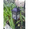 Paradise Garden Lighting Low Voltage 11 Watt Manchester Pathway Light