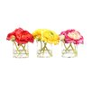 Vickerman Co. Floral Ranunculus in Glass Cube Assortment (Set of 3)