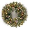 "National Tree Co. Glittery Bristle Pine Pre-Lit 24"" Wreath"