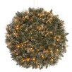 National Tree Co. Pre-Lit Glittery Bristle Pine Kissing Ball with 50 Battery-Operated White LED Lights