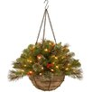 """National Tree Co. Crestwood Spruce Pre-Lit 20"""" Chain Hanging Basket with 50 Battery-Operated White LED Lights"""