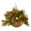 "National Tree Co. Decorative Pre-Lit 20"" Elegance Hanging Basket with 50 Battery-Operated White LED Lights"