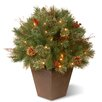 <strong>Pre-Lit Glistening Pine Porch Bush</strong> by National Tree Co.
