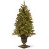 <strong>Douglas Fir 4' Green Downswept Fir Entrance Artificial Christmas Tr...</strong> by National Tree Co.
