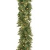 "National Tree Co. Wispy Willow Pre-Lit 9' x 10"" Garland"