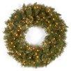 "National Tree Co. Wispy Willow 36"" Pre-Lit Wreath"
