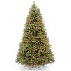 National Tree Co. Douglas 10' Green Fir Artificial Christmas Tree with 1000 LED Multi Lights and Stand