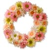 National Tree Co. Cosmos Wreath