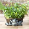 SPI Home Limber Frog Round Planter Holder