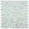 EliteTile Shore Natural Seashell Textured Mosaic in White