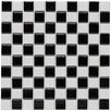"<strong>EliteTile</strong> Checker 1"" x 1"" Glazed Porcelain Mosaic in White and Black"