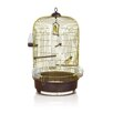 <strong>Luna Canary Cage in Brass</strong> by Imac
