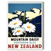 Americanflat New Zealand Mountain Daisy Vintage Advertisement Graphic Art